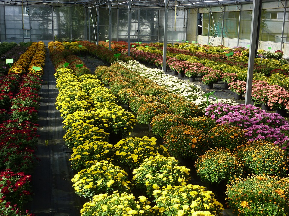 Smart Horticulture