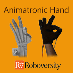 Animatronic Hand Workshop Robotics at Skyfi Labs Center Workshop