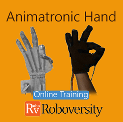Animatronic Hand Online Project based Course Robotics at Online Workshop