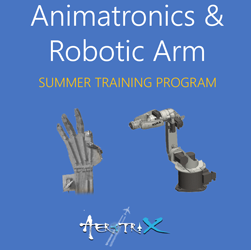 Summer Training Program in Mechatronics - Animatronics and Robotic Arm  at Skyfi Labs Center, Marathahalli Workshop