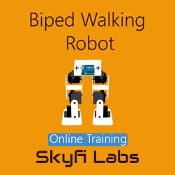 Biped Walking Robot Online Project-based Course  at Online Workshop
