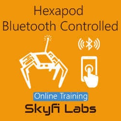 Hexapod: Bluetooth Controlled - Online Project based Course  at Online Workshop
