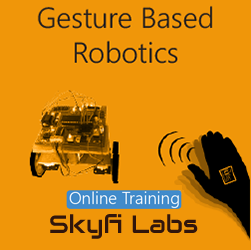 Gesture Based Robotics Online Project based Course Robotics at Online Workshop