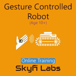 Gesture Robot for School Students Online Project Based Course  at Online Workshop