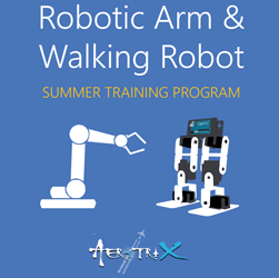 Summer Training Program in Mechatronics - Robotic Arm and Walking Robot  at Skyfi Labs Center, Marathahalli Workshop