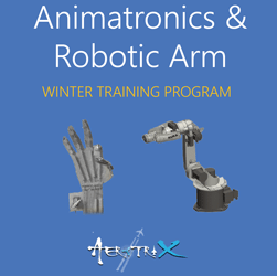 Winter Training Program on Mechatronics - Animatronics and Robotic Arm  at Skyfi Labs Center, Gateforum, Vishal Mega Mart, VIP Road Workshop