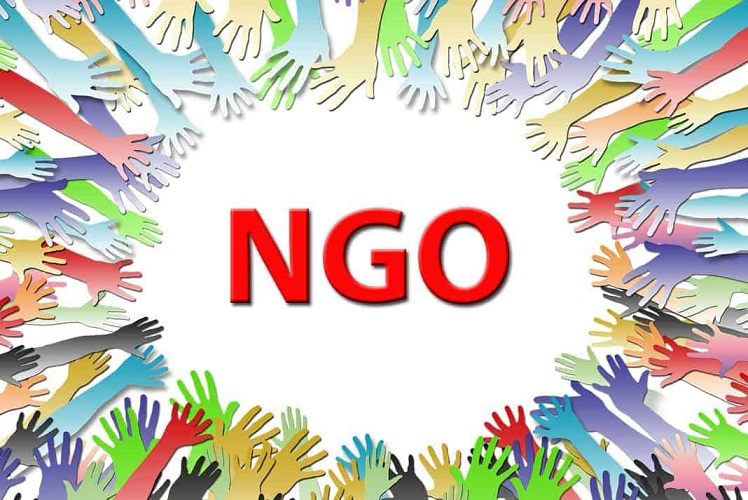 NGO Activity portal project