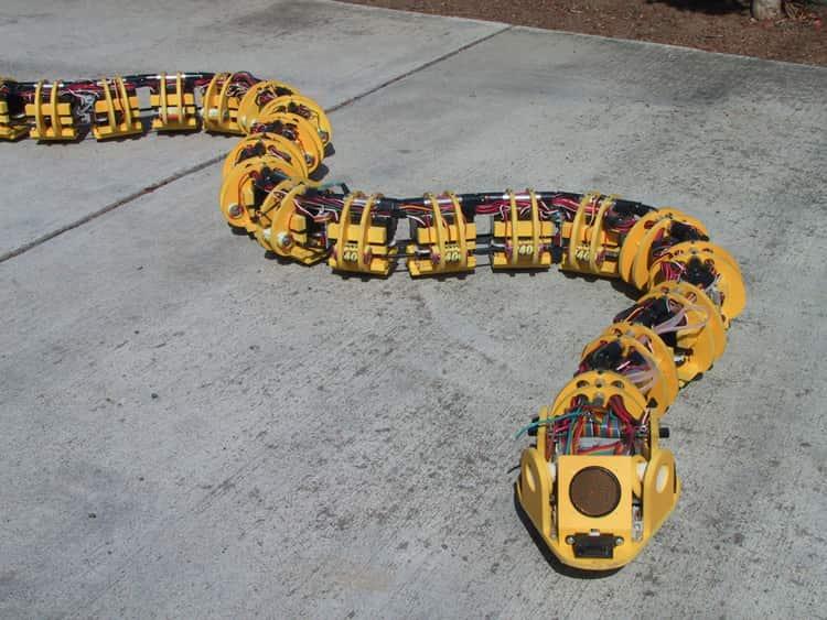 Robotic Snake using Arduino