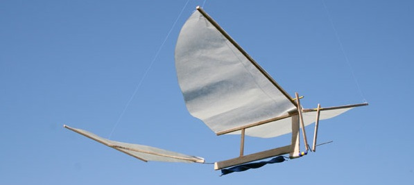 Ornithopter Workshop for Engineering Students