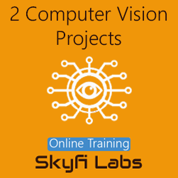 2 Computer Vision Projects Online Project-based Course (Combo Course)  at Online Workshop