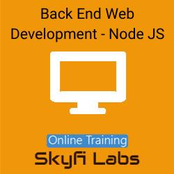 Back End Web Development with Node JS Online Live Course  at Online Workshop