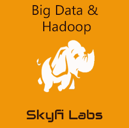 Big Data and Hadoop Workshop  at Magnovite 2019-Christ University Workshop