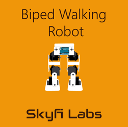 Biped Walking Robot Workshop Robotics at Skyfi Labs Center, Nesto Institute of Finance Workshop