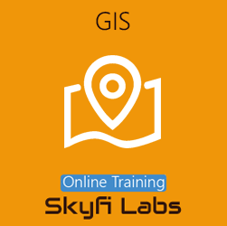 GIS (Geographic Information System) - Online Project-based Course  at Online Workshop