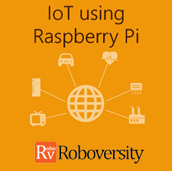 IoT using Raspberry Pi Workshop  at Skyfi Labs Center Workshop