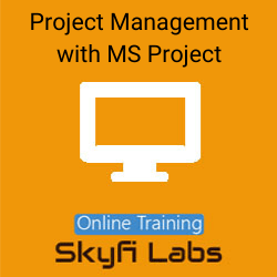 Project Management with Primavera Online Live Course  at Online Workshop