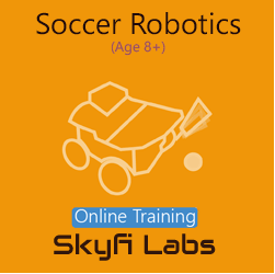 Soccer Robotics Online Project based Course for School Students