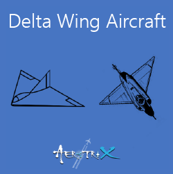 Delta Wing Workshop Aeromodelling
